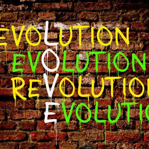 Revolution Evolution