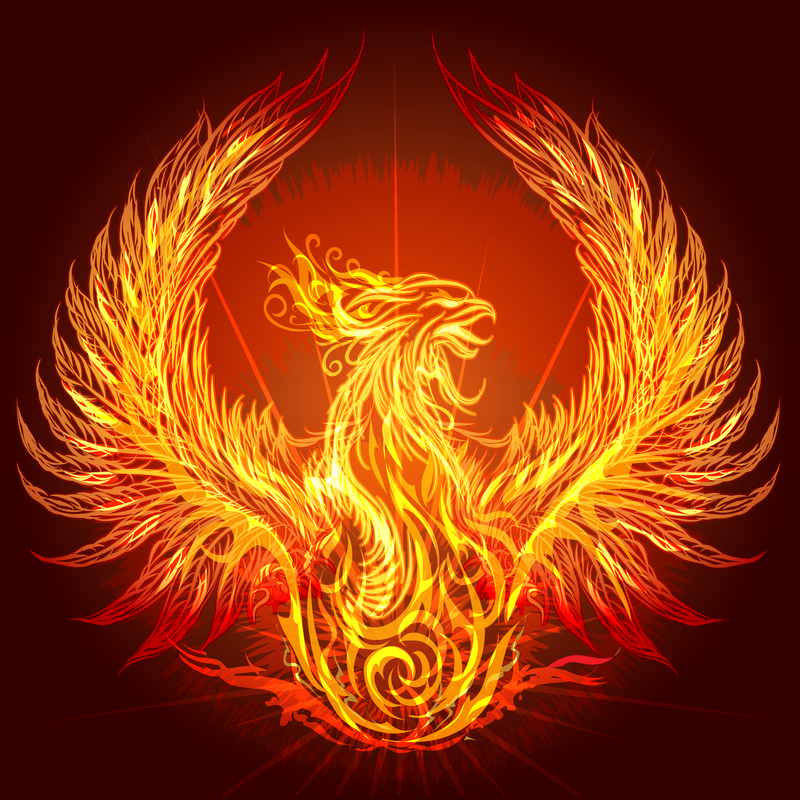 living in the year of the phoenix